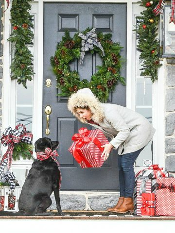 EVERY PORCH NEES A DOG AT CHRISTMAS