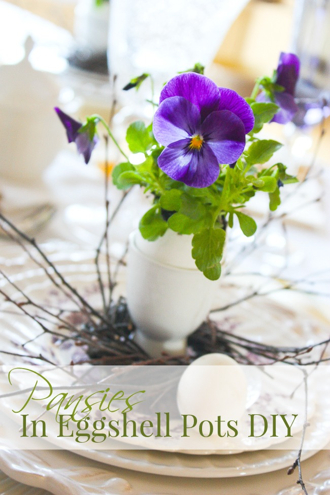 Purple pansies in eggshells as containers.