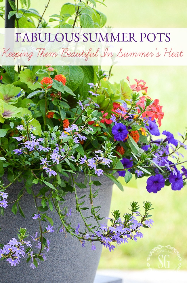 large pot filled with summer plants and flowers