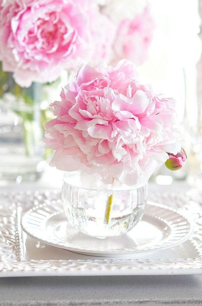 pink peony in a small glass on a stack of white dishes