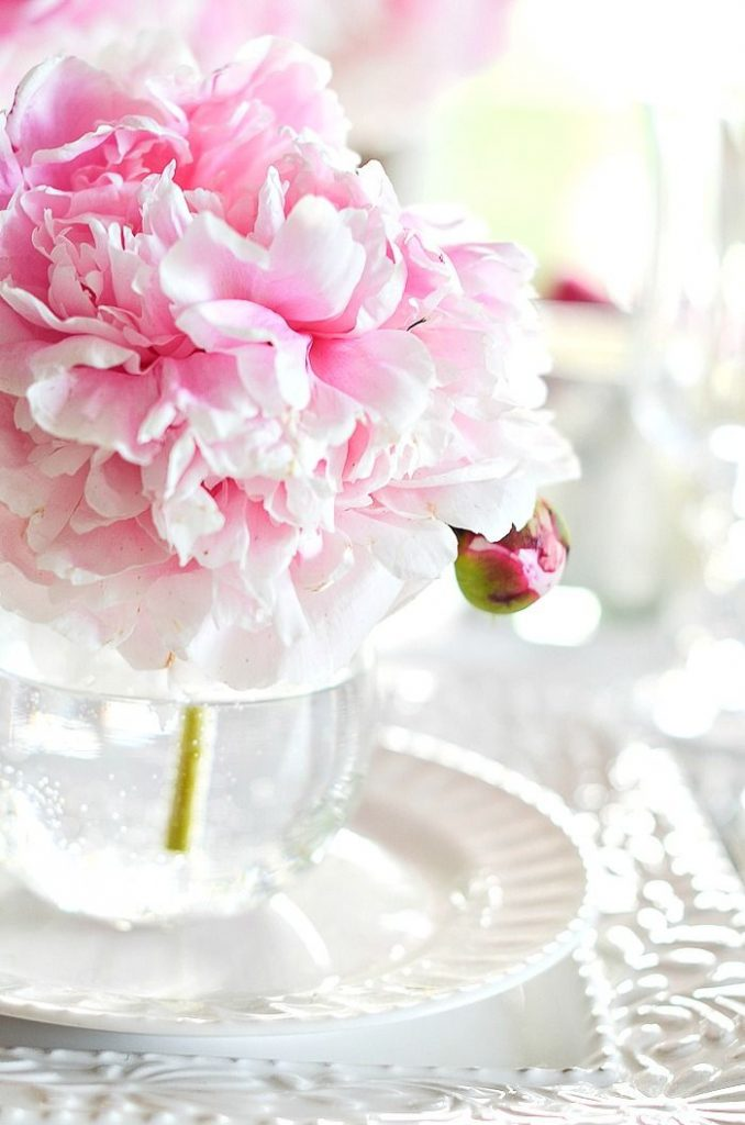 large pink peony bloom at a place setting on a table