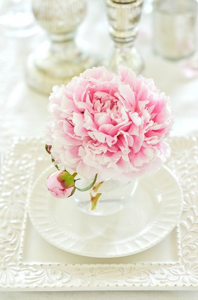 large pink peony in a glass on top of white dishes