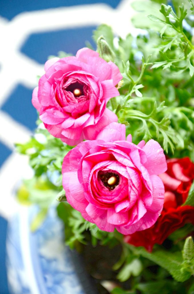 pink flowers in a blue and white ceramic container garden.