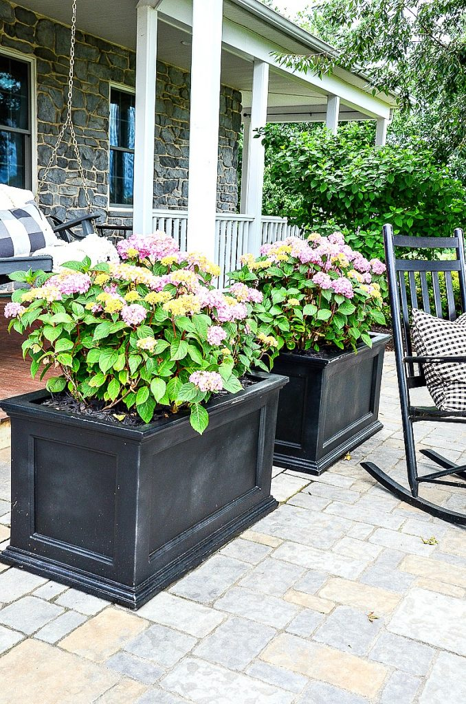 back patio and porch with rocking chairs and hydrangeas in planters