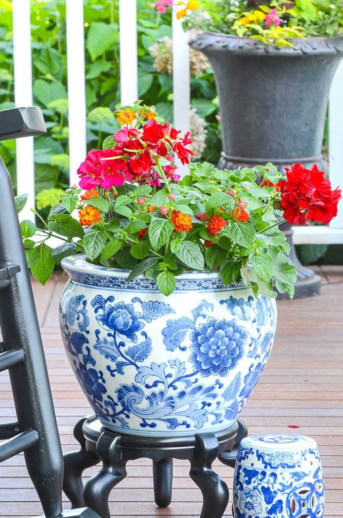 blue and white chinoiserie pot filled with red and pink flowers