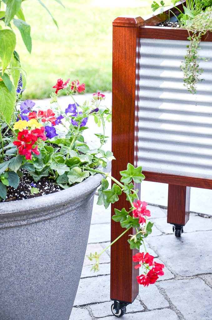 container gardens on the back porch