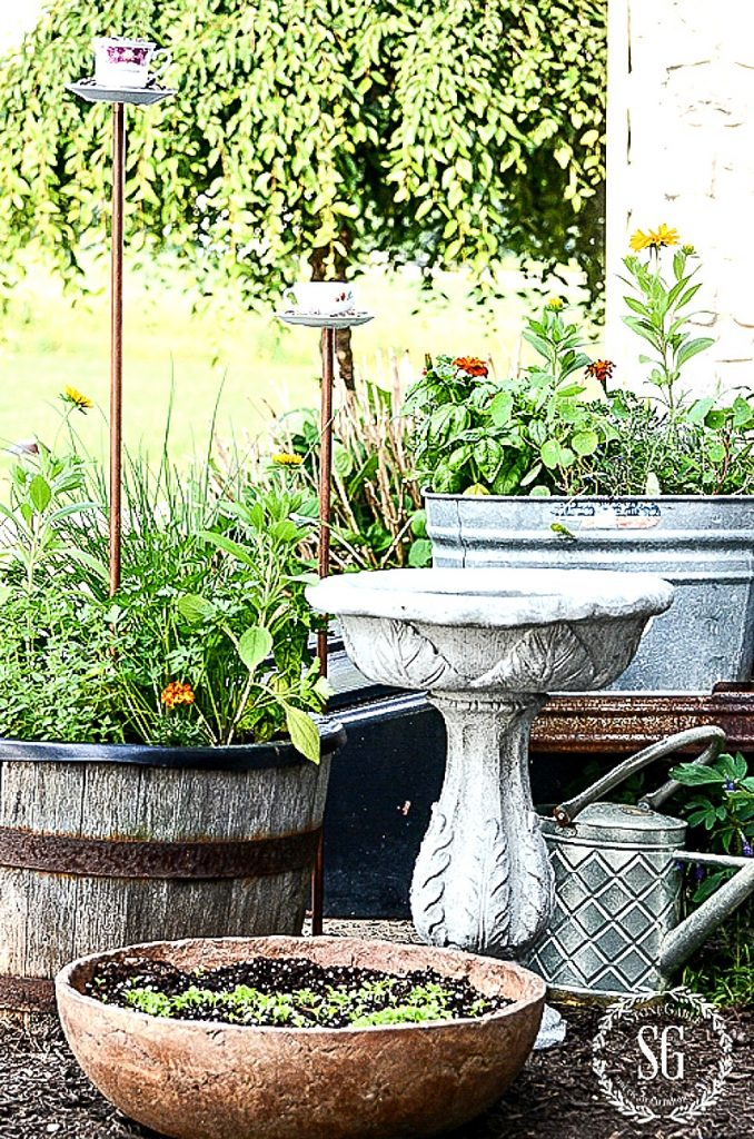 herb garden in various pots and containers on the patio with birdbath and bird feeders