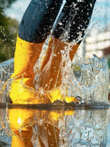 SPLASHING LIVING WATER ON A THIRSTY WORLD