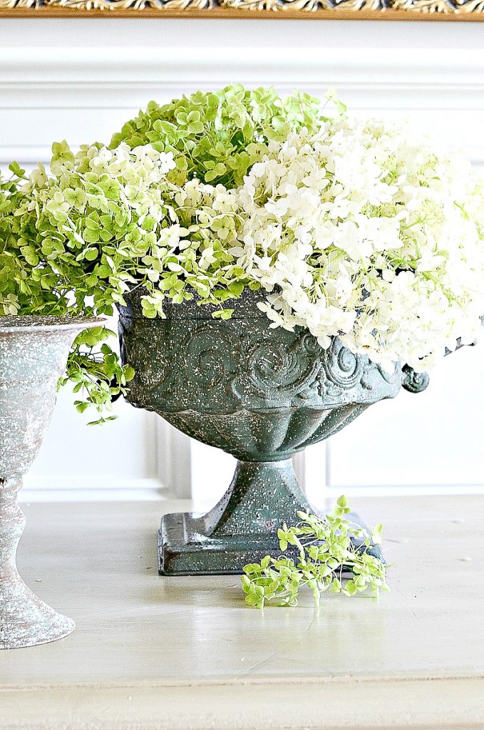 dried green hydrangeas in urns