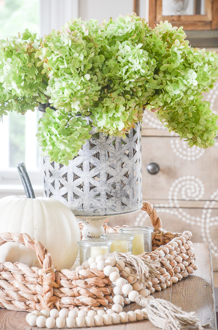fall vignette on a coffee table with green hydrangeas and pumpkins
