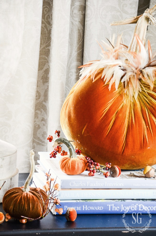 beautiful burnt orange velvet pumpkins with a feather collar for fall home tour