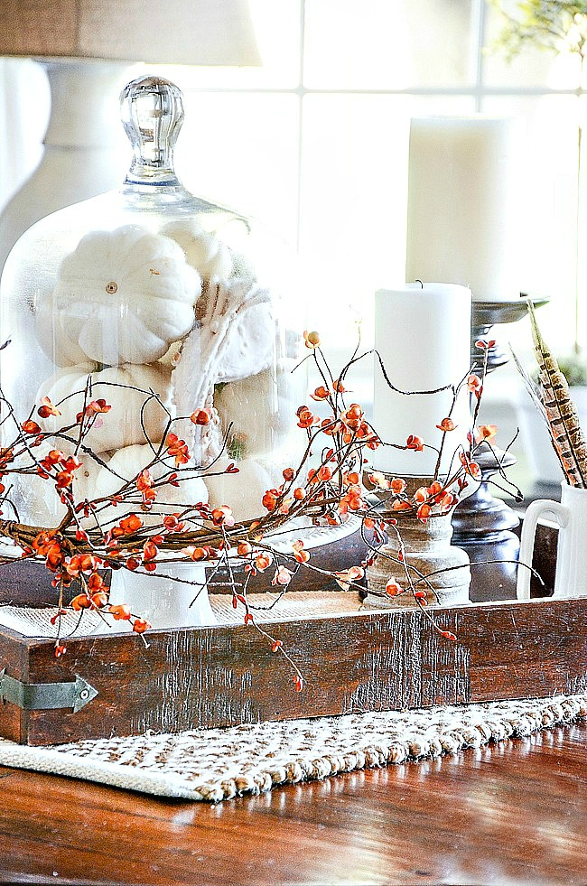 fall vignette with a cloche full of white pumpkins