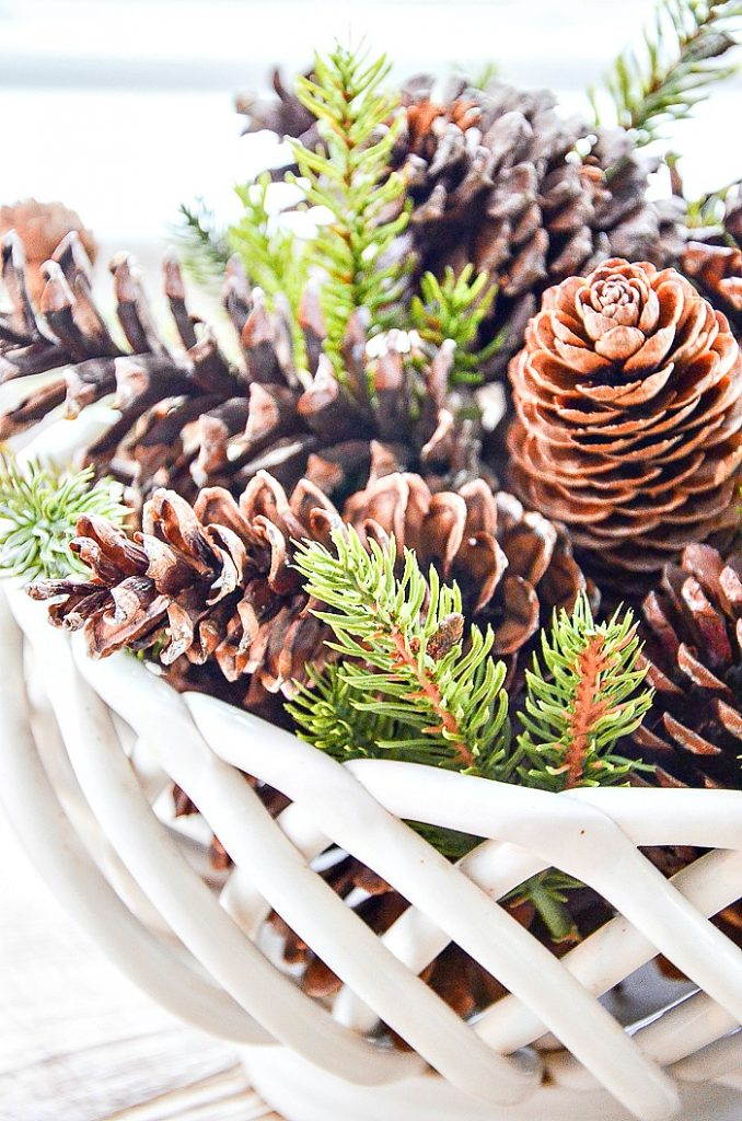 assorted pinecones in a bread basket