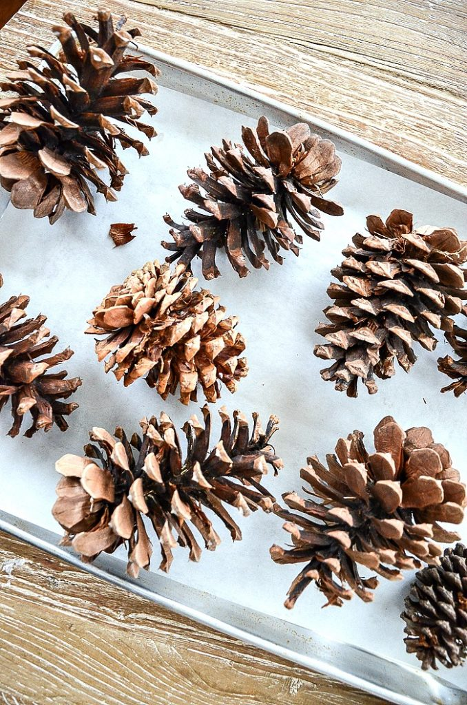 pinecones on a baking sheet to make scented pinecone diy