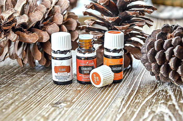 bottles of essential oil to make scented pinecone diy