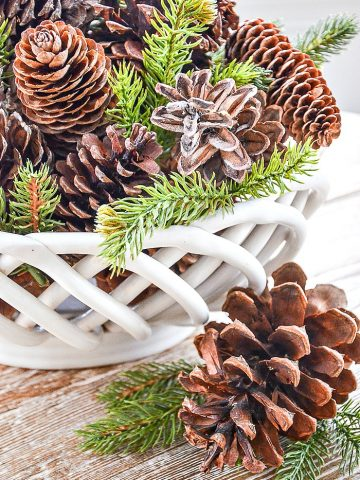 pinecones in a white bowl