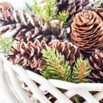 PIN FOR SCENTED PINECONE