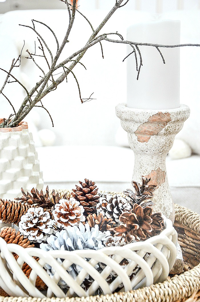 winter vignett with pinecones and twigs
