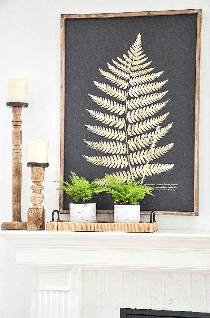 low basket holding fern plants on a mantel