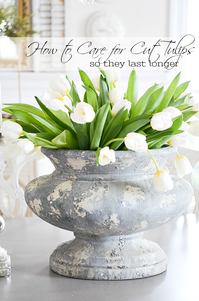 tulips in a gray urn