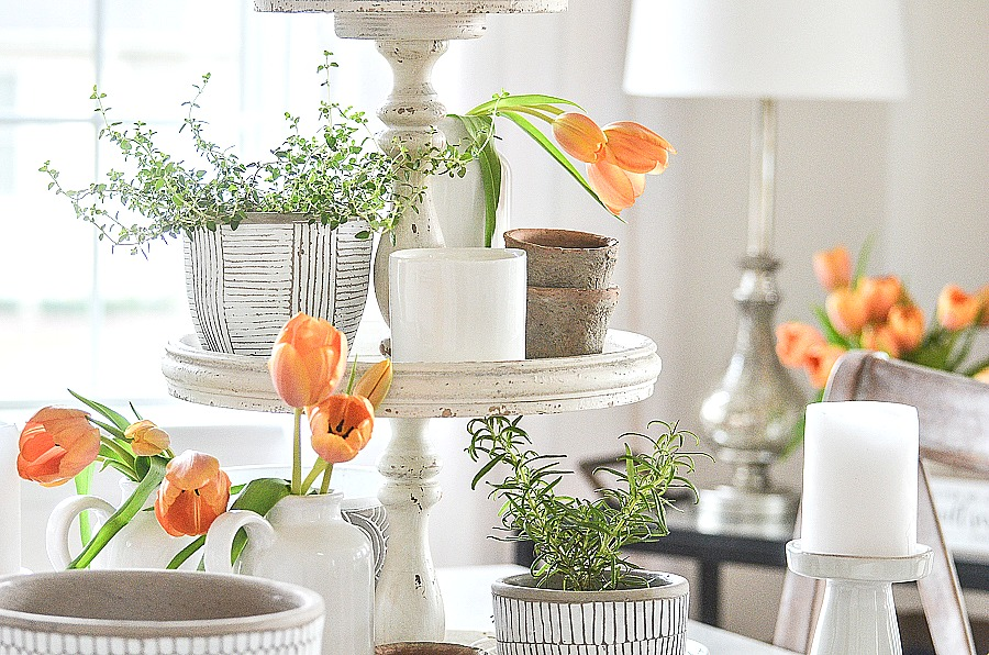 A MIX OF HERBS AND ORANGE TULIPS ON A DINING ROOM TABLE