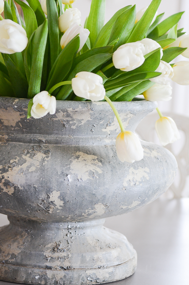 White tulips in a big gray urn