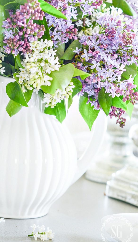 LILACS IN WHITE PITCHERS IN A CLEAN AND ORGANIZED HOME
