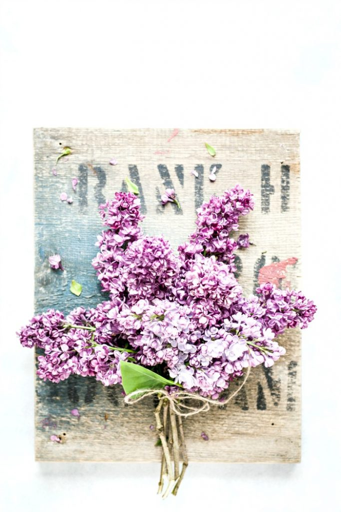 bunch of lilacs tied with twine AFTER CLEANING AND ORGANIZING