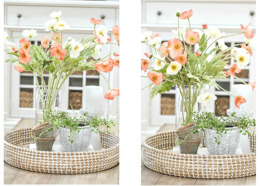 IMAGES DEMONSTRATING HOW CUT STEMS LOOK BETTER THAN NON CUT STEMS