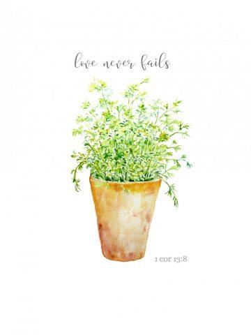 LOVE NEVER FAILS POT OF HERBS