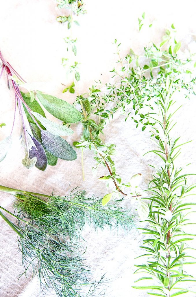 different herbs on a table