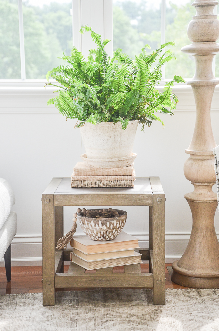 A TABLE WITH A FERN ON IT