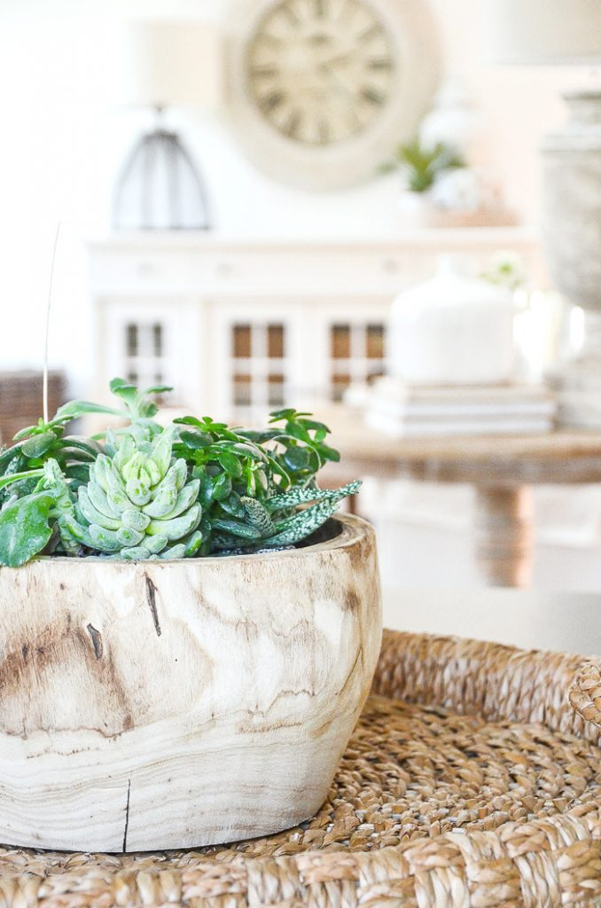 WOODEN BOWL FILLED WITH SUCCULENTS