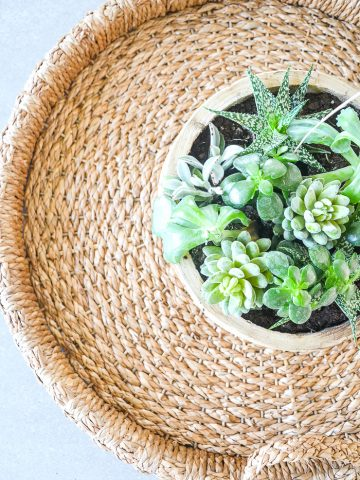 A ROUND BASKET AND A ROUND WOODEN BOWL OF SUCCULENTS