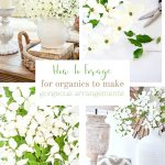 4 image for how to forage pin