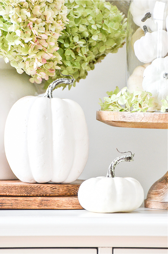 WHITE PUMPKINS AND GREEN HYDRANGEAS IN A FALL VIGNETTE