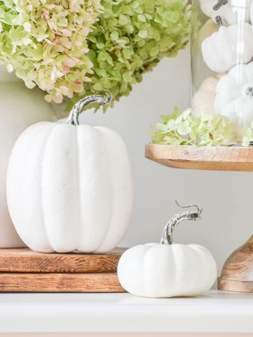 FALL CLOCHE IDEA- PUMPKINS AND HYDRANGEAS