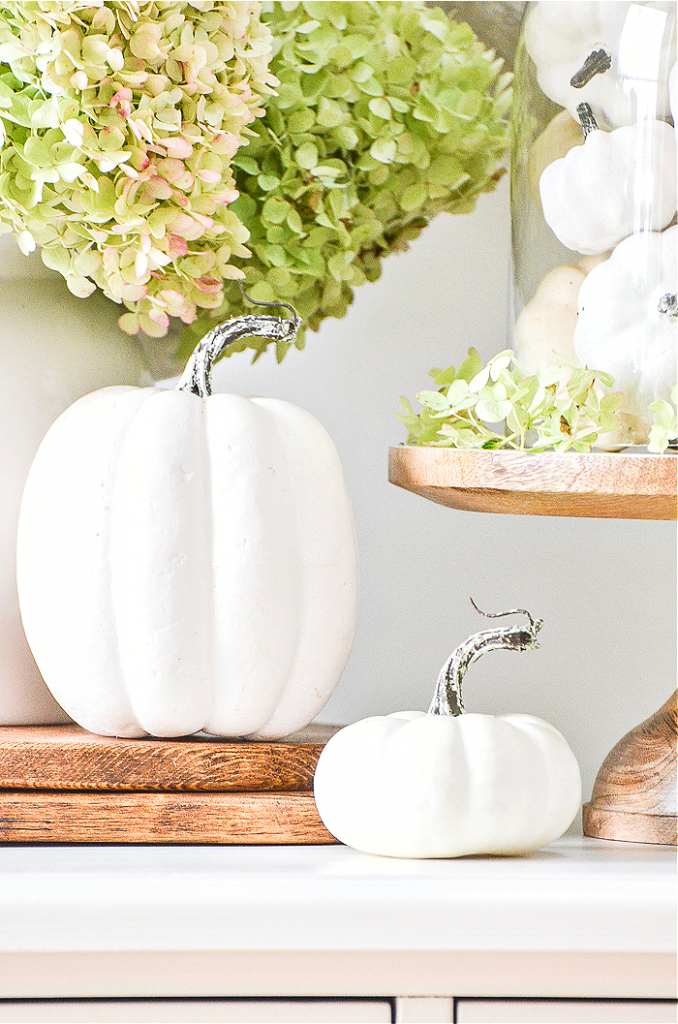 WHITE PUMPKINS, GREEN HYDRANGEAS AND A CLOCHE MAKE UP A FALL ARRANGEMENT