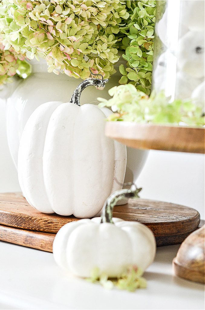 Pumpkins and hydrangeas make a pretty vignette
