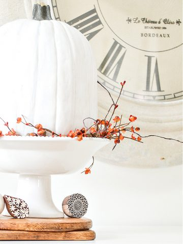EASY AND PRETTY 5 MINUTE FALL DECORATING