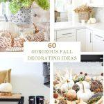 COLLAGE OF FALL DECORATING