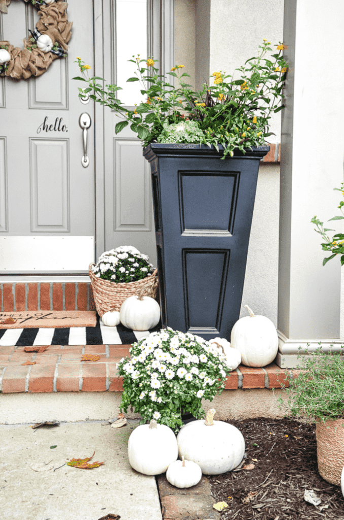 A BLACK PLANTER FILLED WITH FALL       PLANTS ON A FRONT PORCH