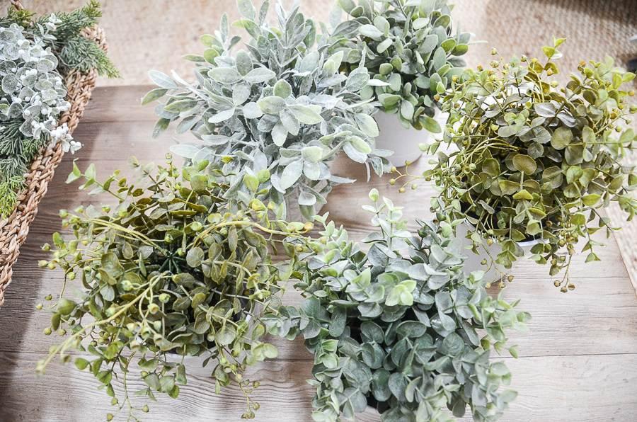 5 FAUX PLANTS