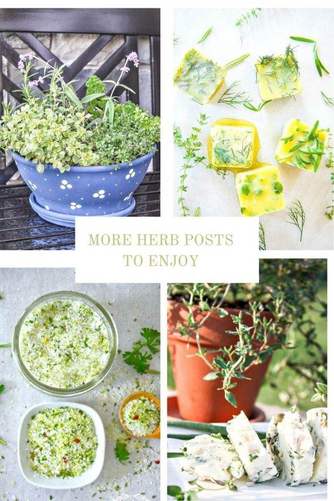 COLLAGE OF HERB POSTS