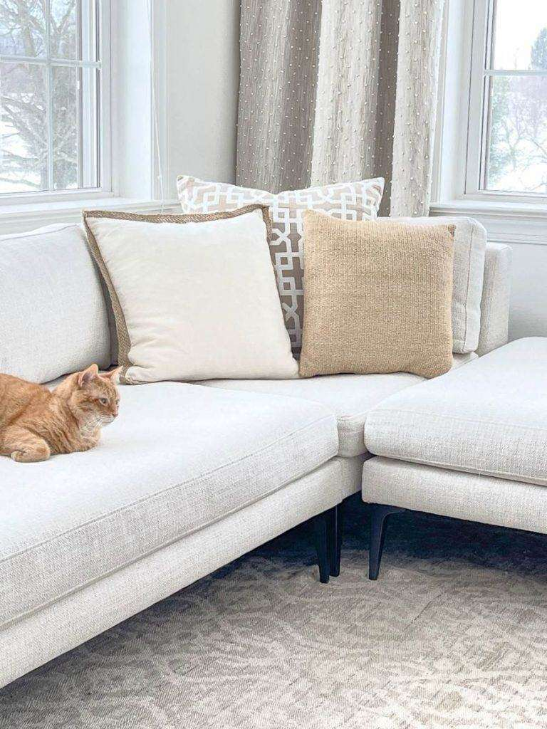 PILLOWS AND A CAT ON A SECTIONAL