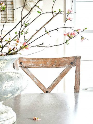 FORCING SPRING BRANCHES IN YOUR HOME