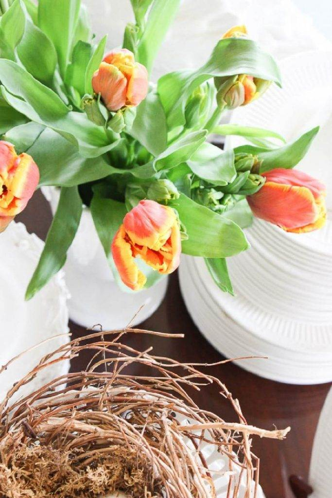TULIPS AND A NEST ON WHITE DISHES