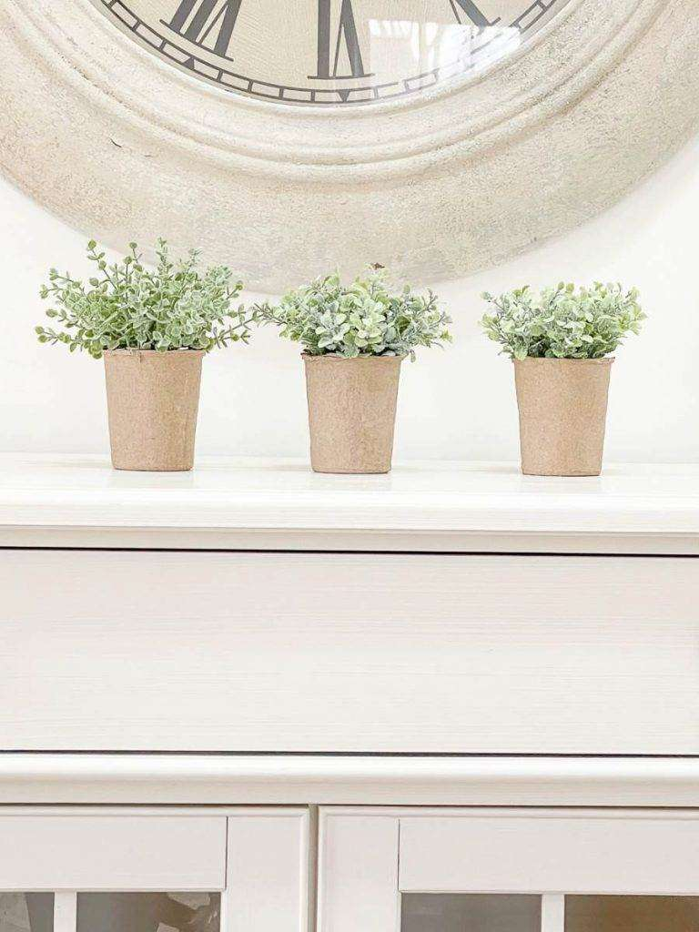 three little potted plants
