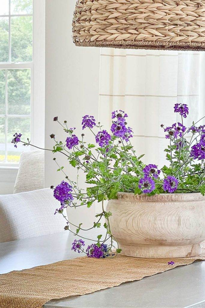 PURPLE FLOWERS ON A DINING TABLE