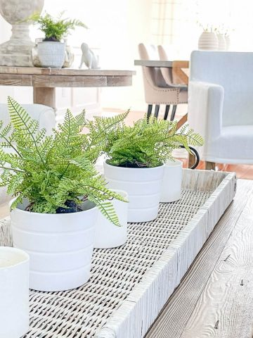 DECORATING WITH TRAYS ON A COFFEE TABLE AND MORE